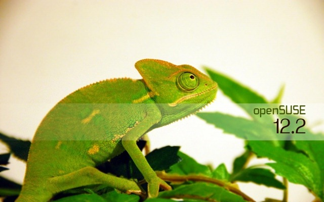800px-Chameleon2